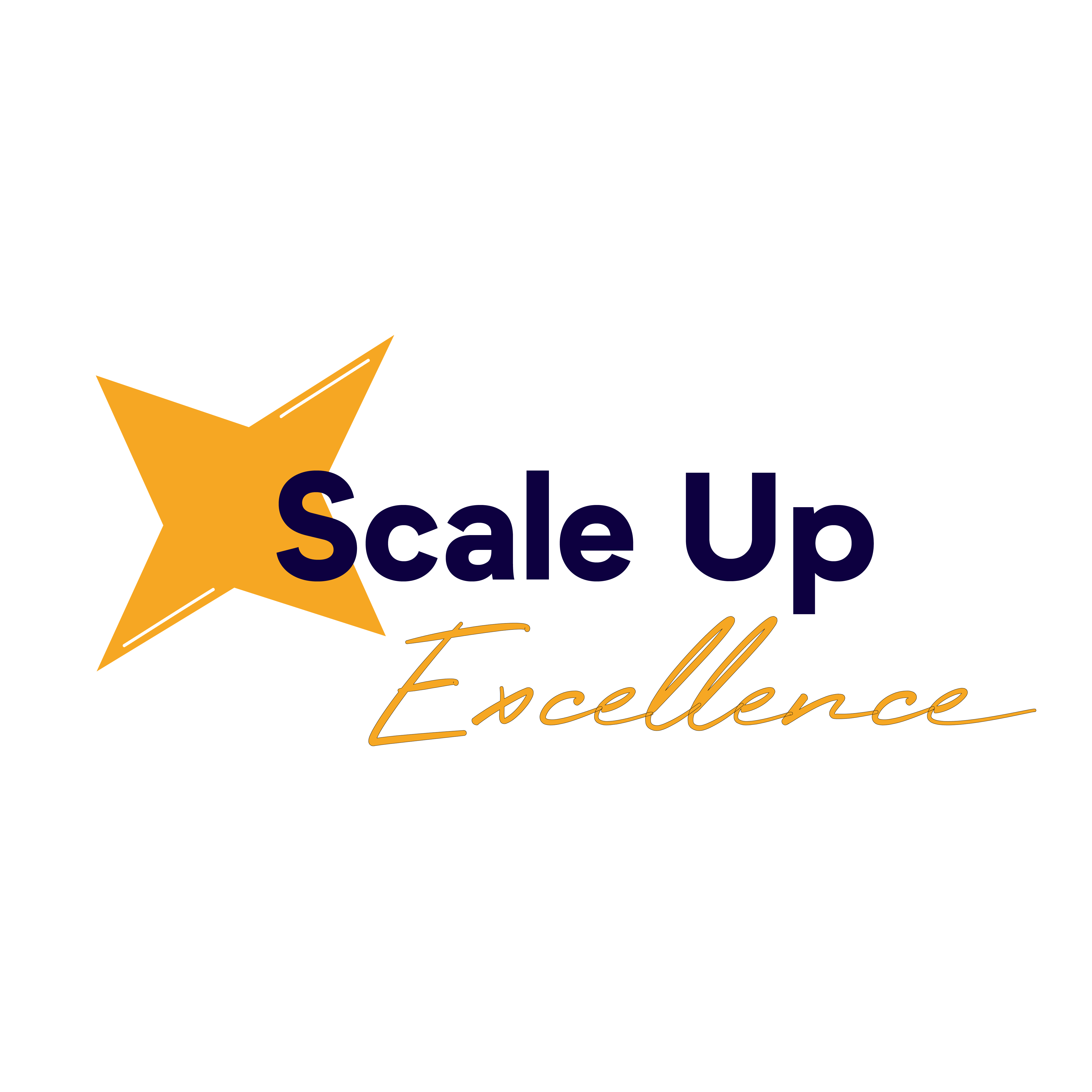 Logo Scale Up Excellence
